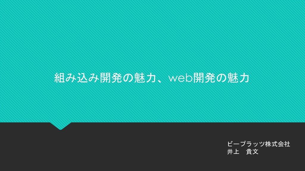 組み込み開発の魅力、web開発の魅力 ビープラッツ株式会社 井上 貴文
