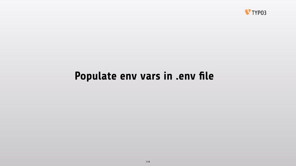 Populate env vars in .env file 114