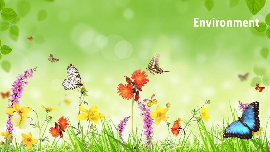 81 Environment
