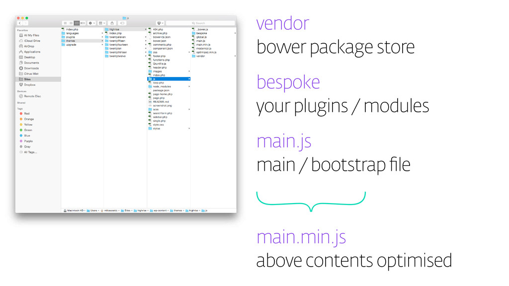 vendor bower package store bespoke your plugins...
