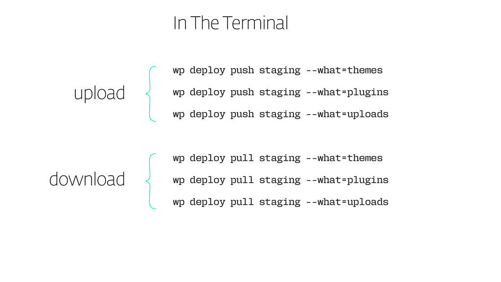 In The Terminal wp deploy push staging --what=t...
