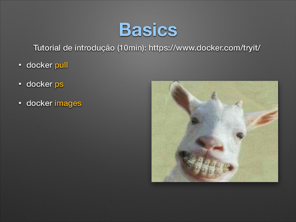 Basics • docker pull • docker ps • docker image...