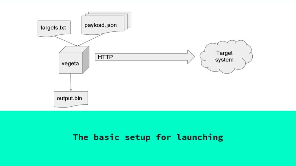 The basic setup for launching vegeta HTTP Targe...