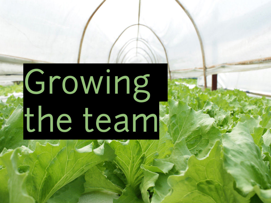 Growing the team