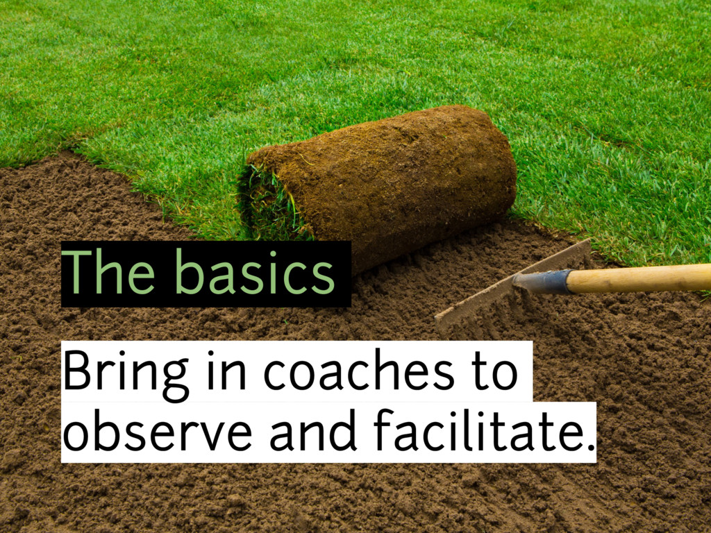 The basics Bring in coaches to observe and faci...