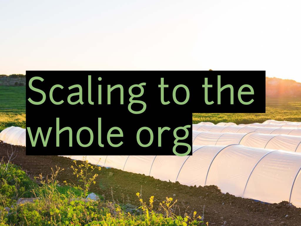 Scaling to the whole org