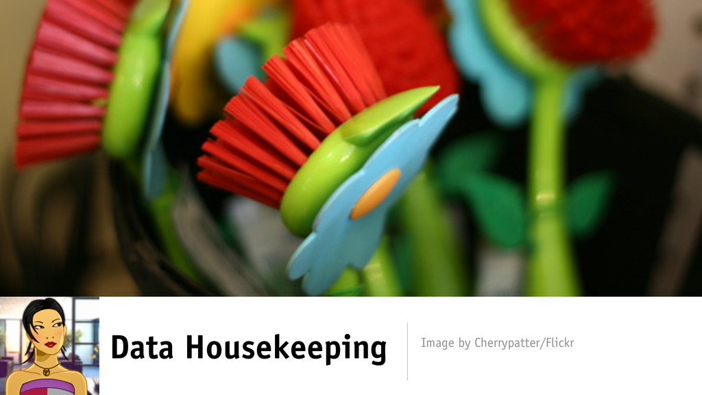 Data Housekeeping Image by Cherrypatter/Flickr
