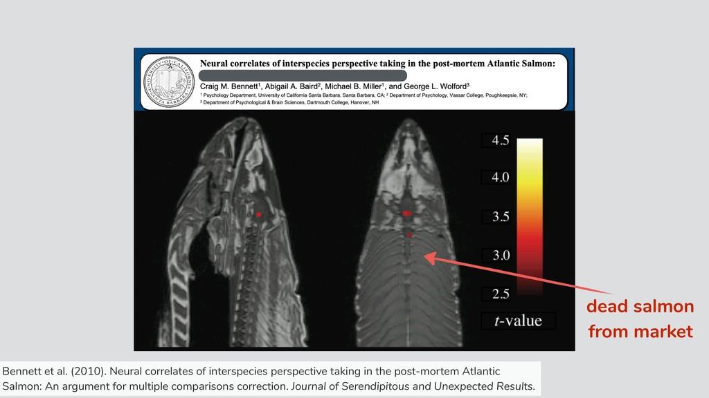 dead salmon from market Bennett et al. (2010). ...