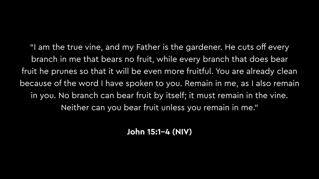 """I am the true vine, and my Father is the garde..."