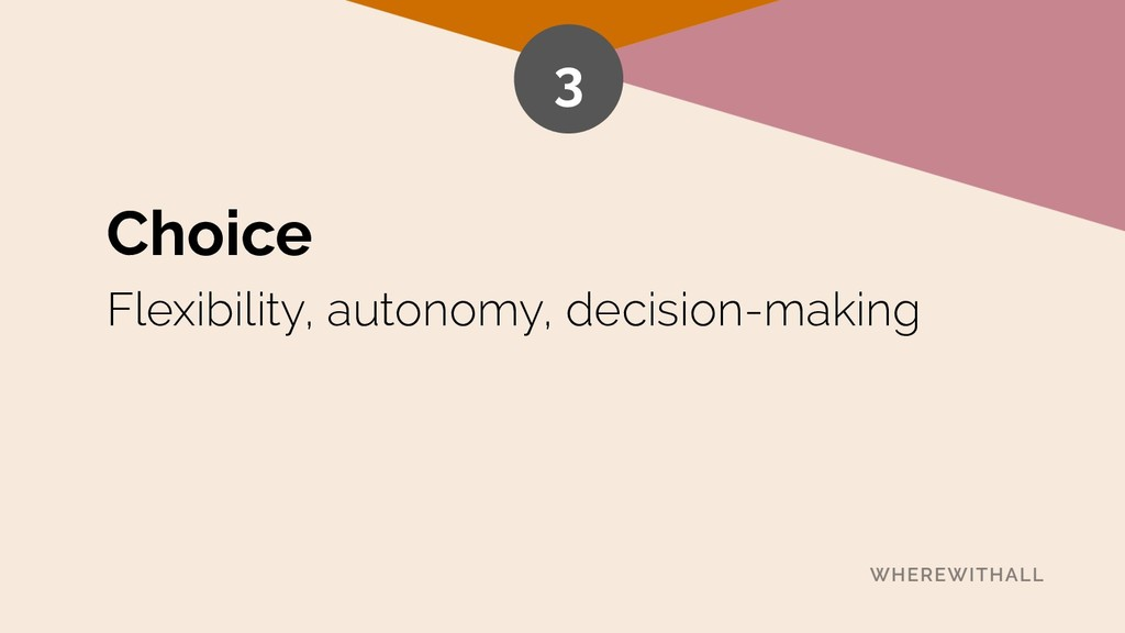 Choice Flexibility, autonomy, decision-making 3