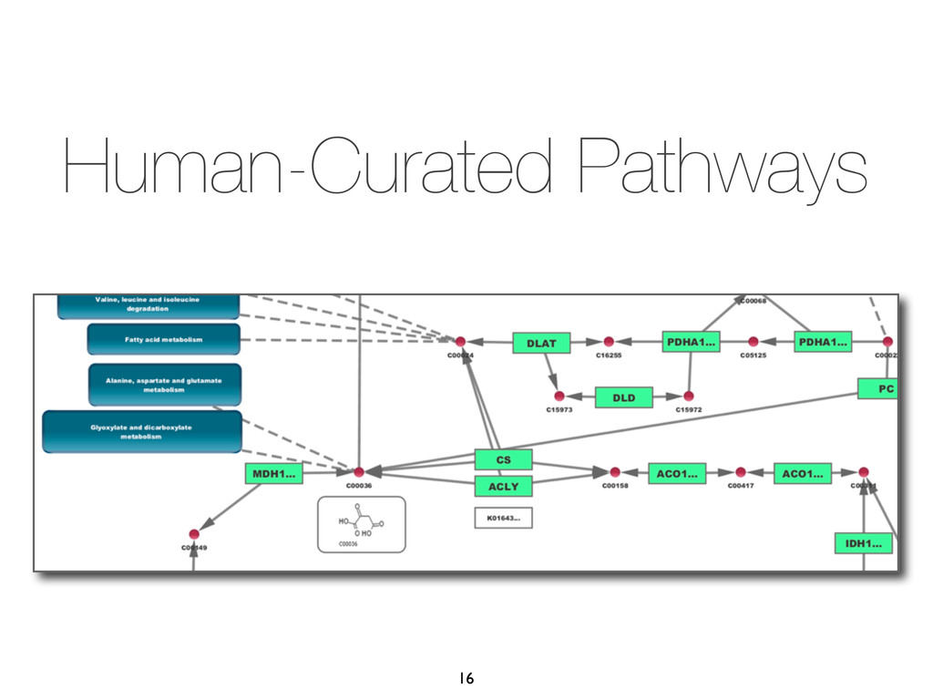 Human-Curated Pathways 16