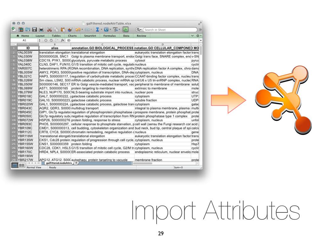 Import Attributes 29
