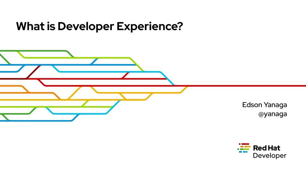 What is Developer Experience? Edson Yanaga @yan...