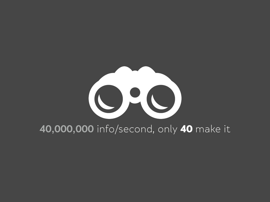 40,000,000 info/second, only 40 make it