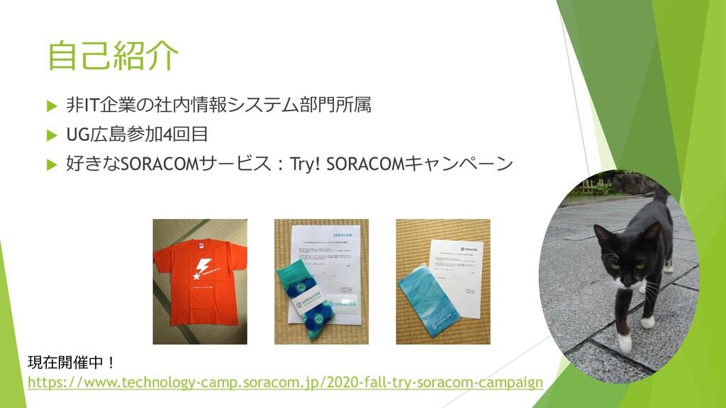 自己紹介  非IT企業の社内情報システム部門所属  UG広島参加4回目  好きなSORA...