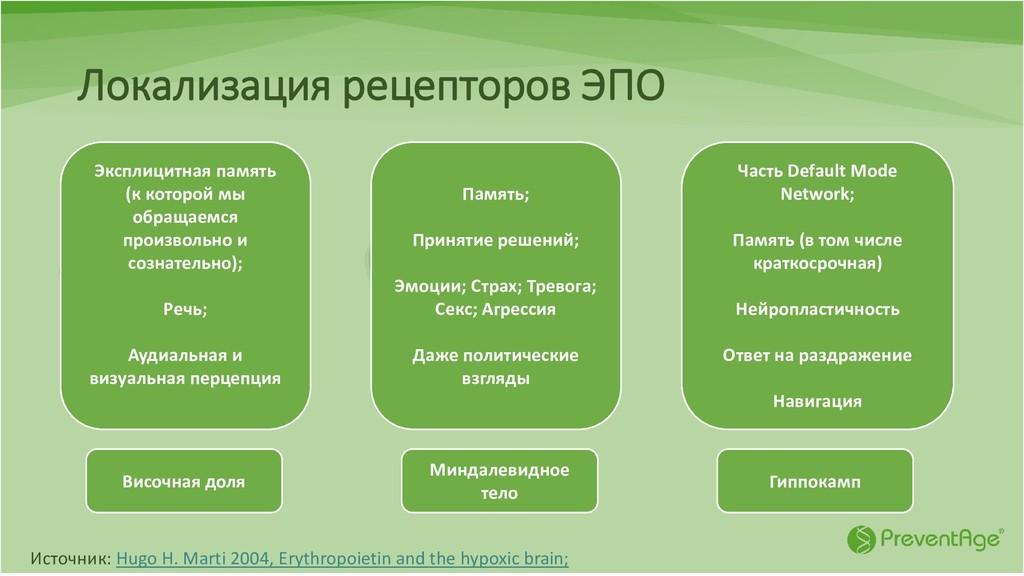 Локализация рецепторов ЭПО Источник: Hugo H. Ma...