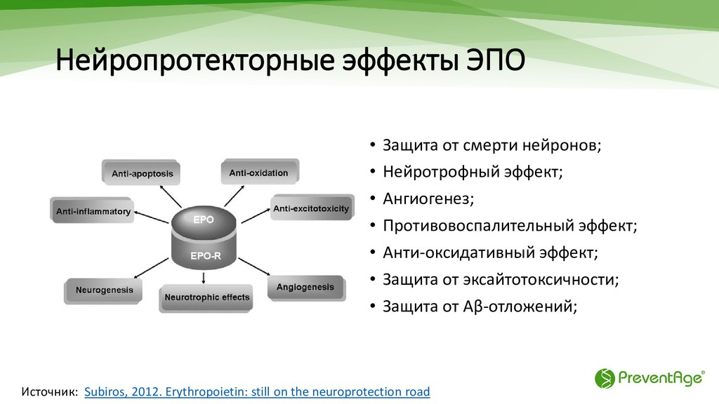 Нейропротекторные эффекты ЭПО • Защита от смерт...