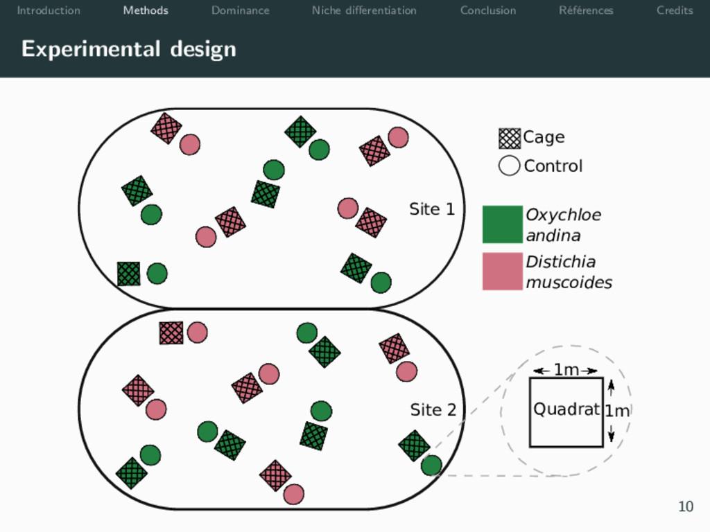 Introduction Methods Dominance Niche differentia...