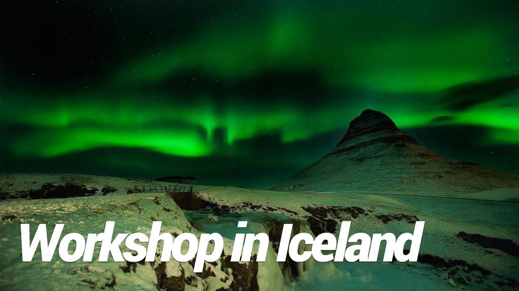 Workshop in Iceland