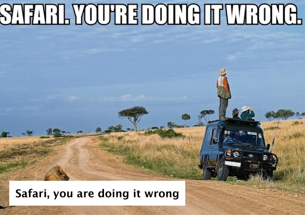 Safari, you are doing it wrong