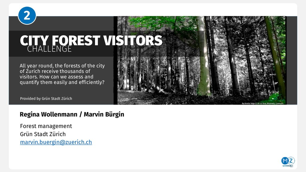 CITY FOREST VISITORS CHALLENGE All year round, ...