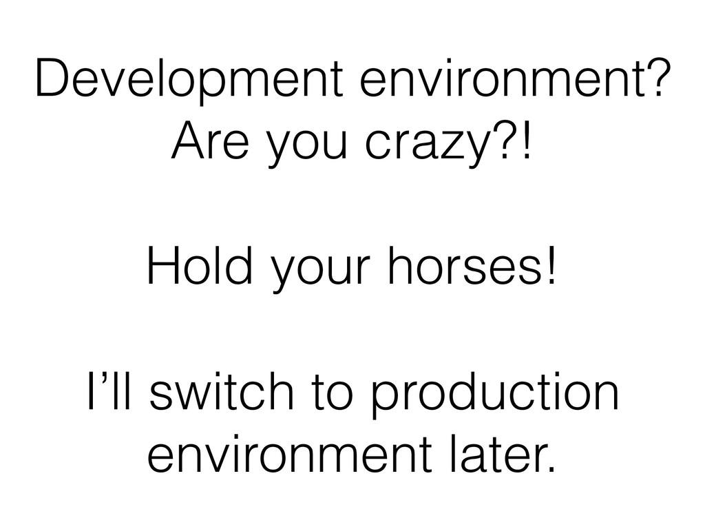 Development environment? Are you crazy?!  Hol...