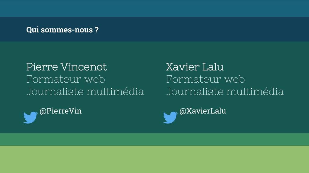 Qui sommes-nous ? Pierre Vincenot Formateur web...