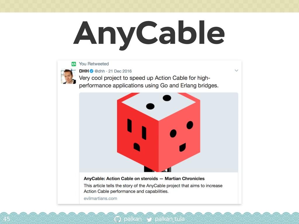 palkan_tula palkan AnyCable 45