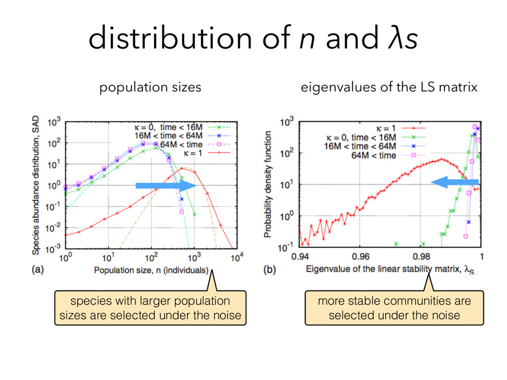 distribution of n and λs population sizes eigen...