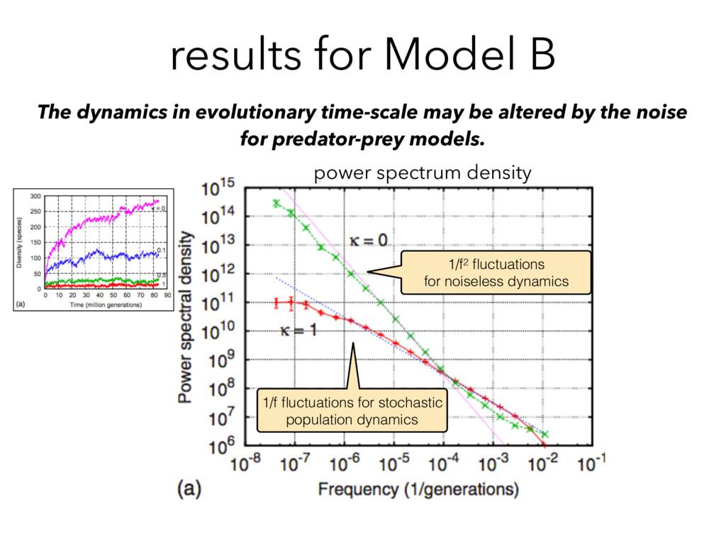 results for Model B The dynamics in evolutionar...