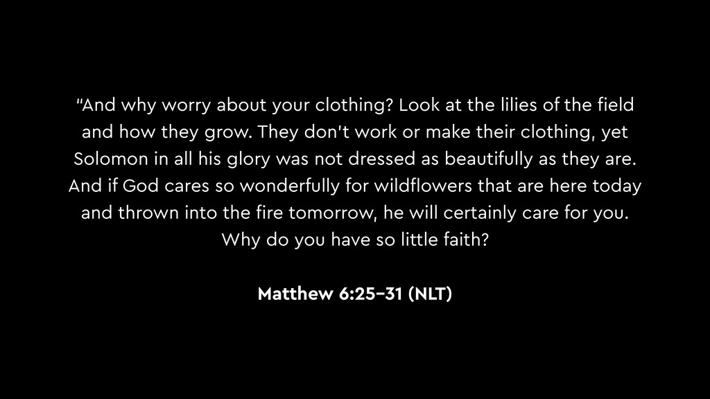 """And why worry about your clothing? Look at the..."