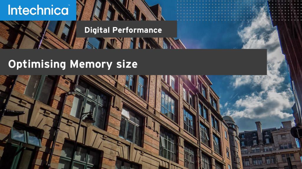 Digital Performance Optimising Memory size