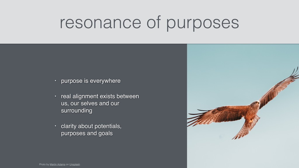 resonance of purposes • purpose is everywhere •...