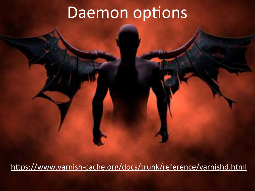 Daemon'op)ons h,ps://www.varnish4cache.org/docs...