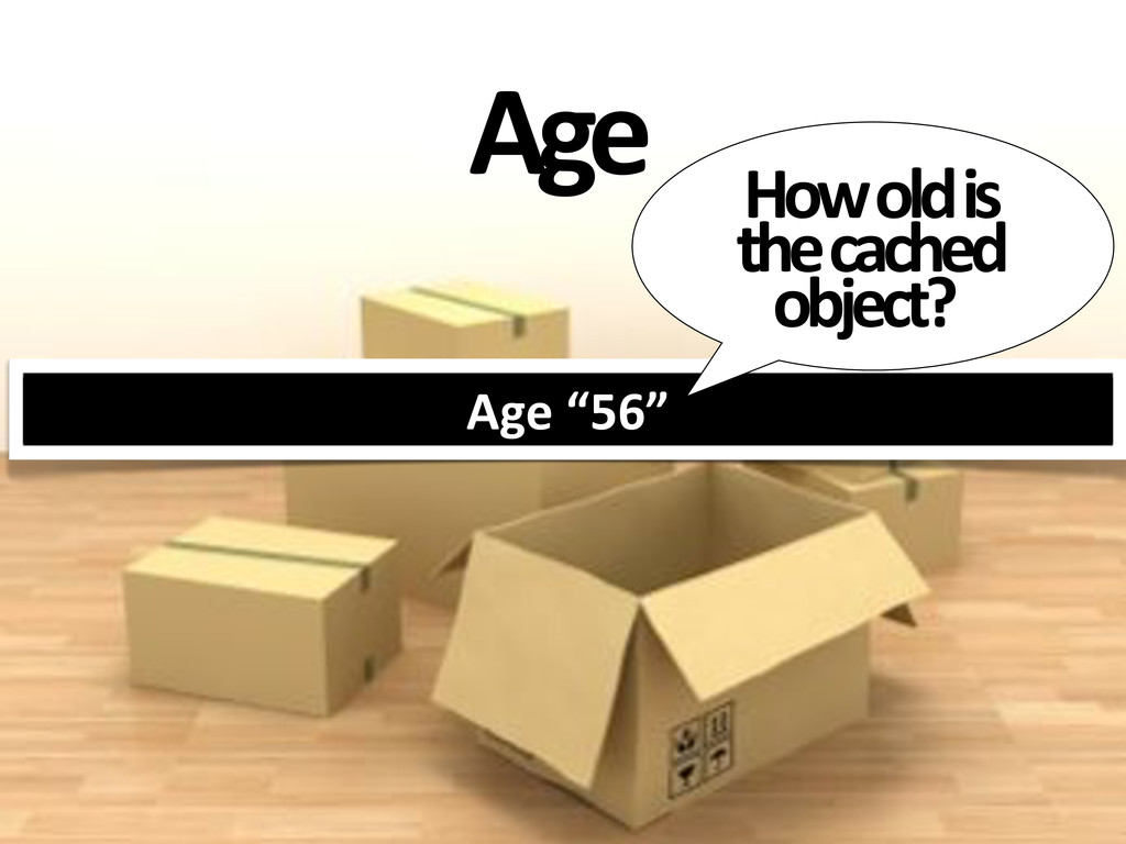 """Age Age'""""56"""" How#old#is# the#cached# object?"""