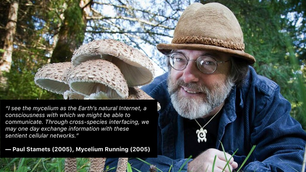 """""""I see the mycelium as the Earth's natural Inte..."""
