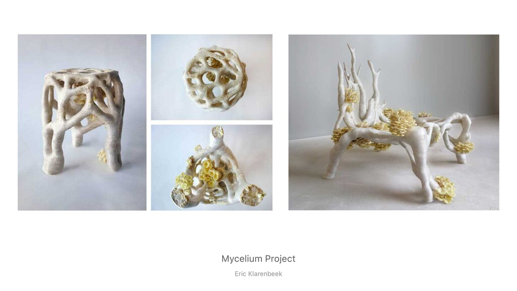 Mycelium Project Eric Klarenbeek