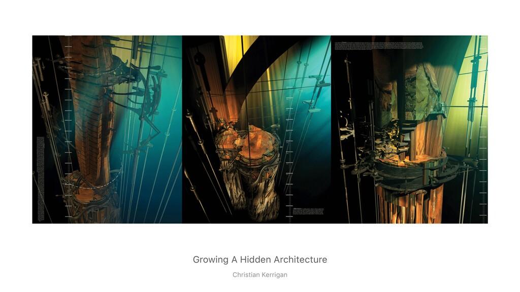 Growing A Hidden Architecture Christian Kerrigan