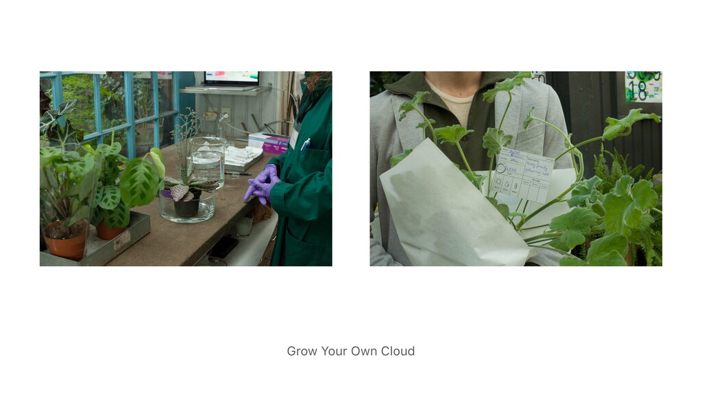 Grow Your Own Cloud