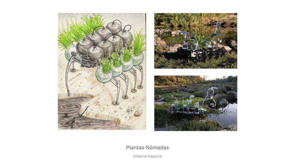 Plantas Nómadas Gilberto Esparza