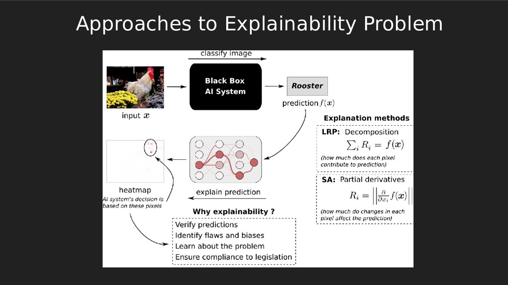 Approaches to Explainability Problem
