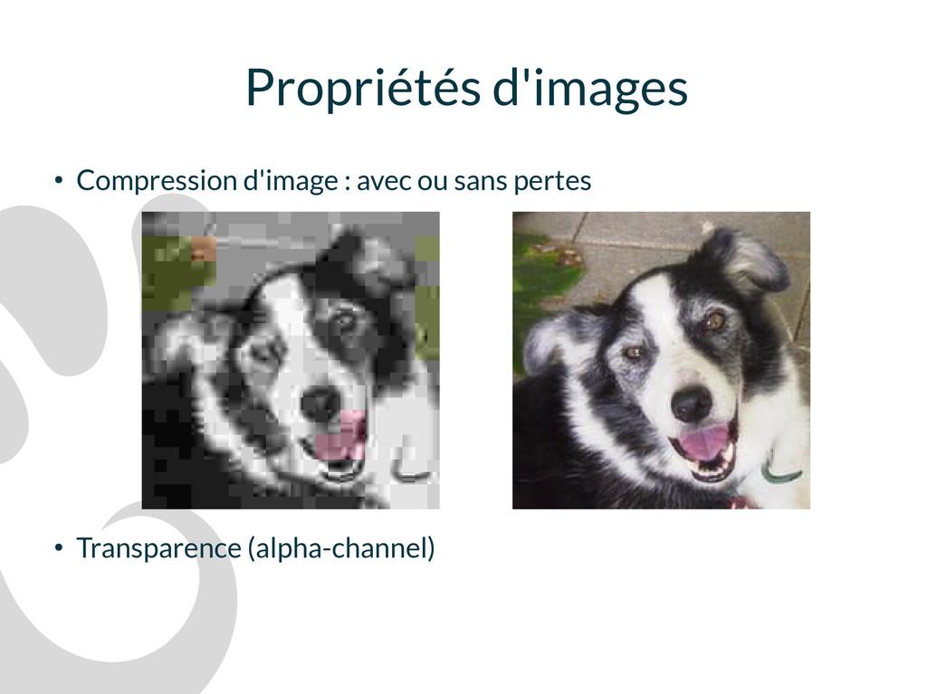 Propriétés d'images ● Compression d'image : ave...
