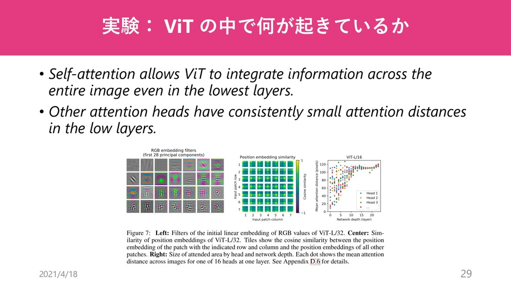 実験: ViT の中で何が起きているか • Self-attention allows ViT...