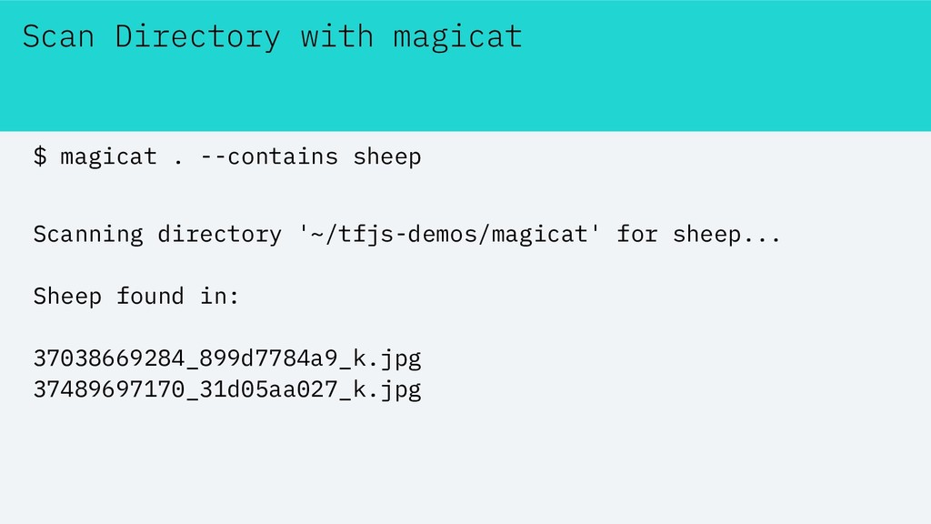 Scan Directory with magicat $ magicat . --conta...