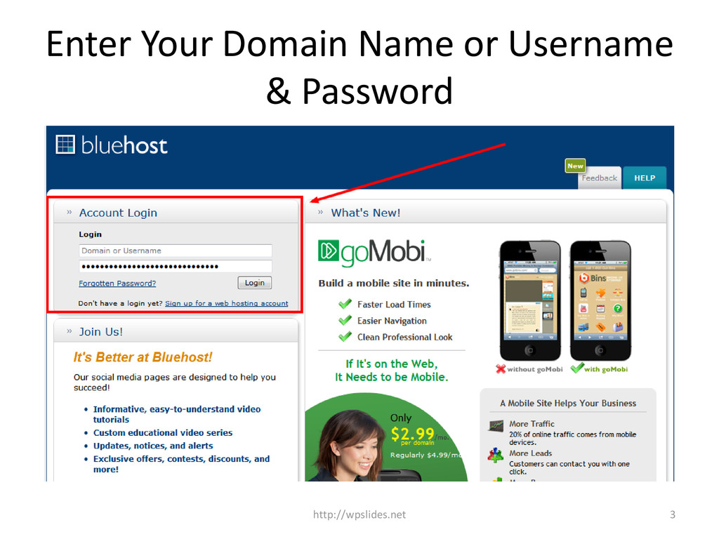 Enter Your Domain Name or Username & Password 3...