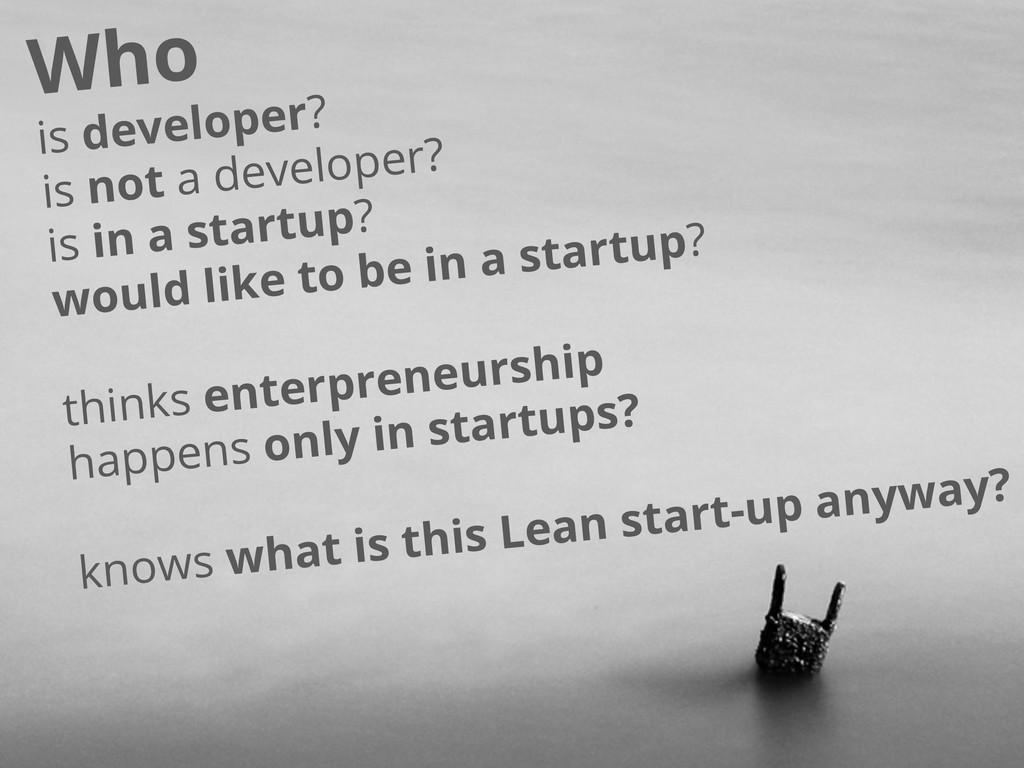 is developer? is not a developer? is in a start...