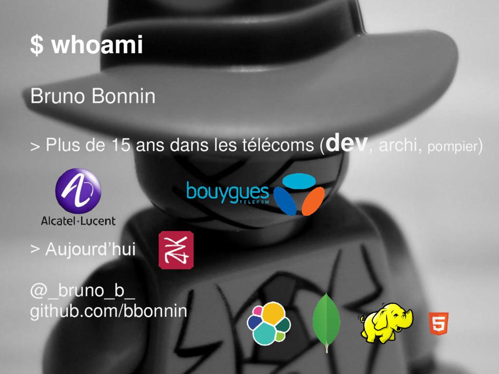 $ whoami Bruno Bonnin > Plus de 15 ans dans les...