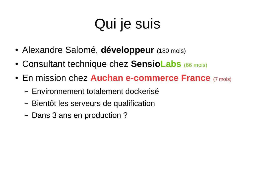 Qui je suis ● Alexandre Salomé, développeur (18...