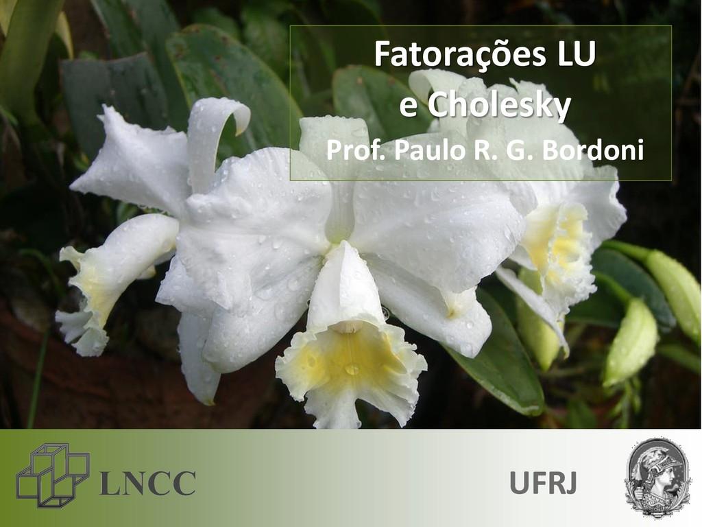 Fatorações LU e Cholesky Prof. Paulo R. G. Bord...