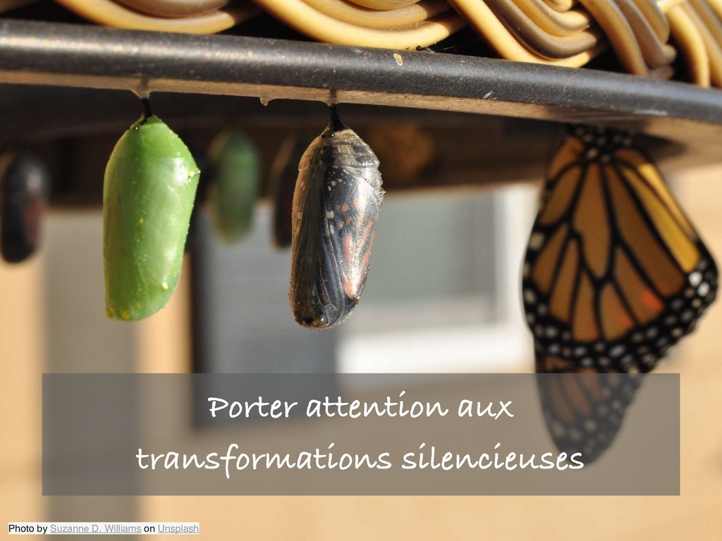 Porter attention aux transformations silencieus...